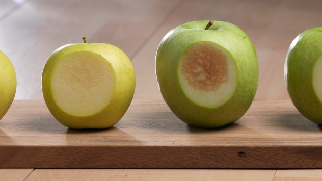 Arctic Apple and GMOs   AGDAILY