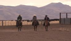 Trailer for 2018's 'Cowboys: A Documentary Portrait'