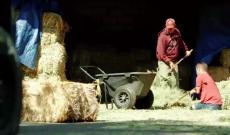 No arms, no legs; no problem for Canada farmer Chris Koch