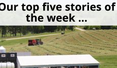 Friday Favorites: Top five AGDAILY stories June 23-29