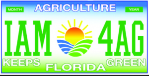 My Florida Specialty Plate