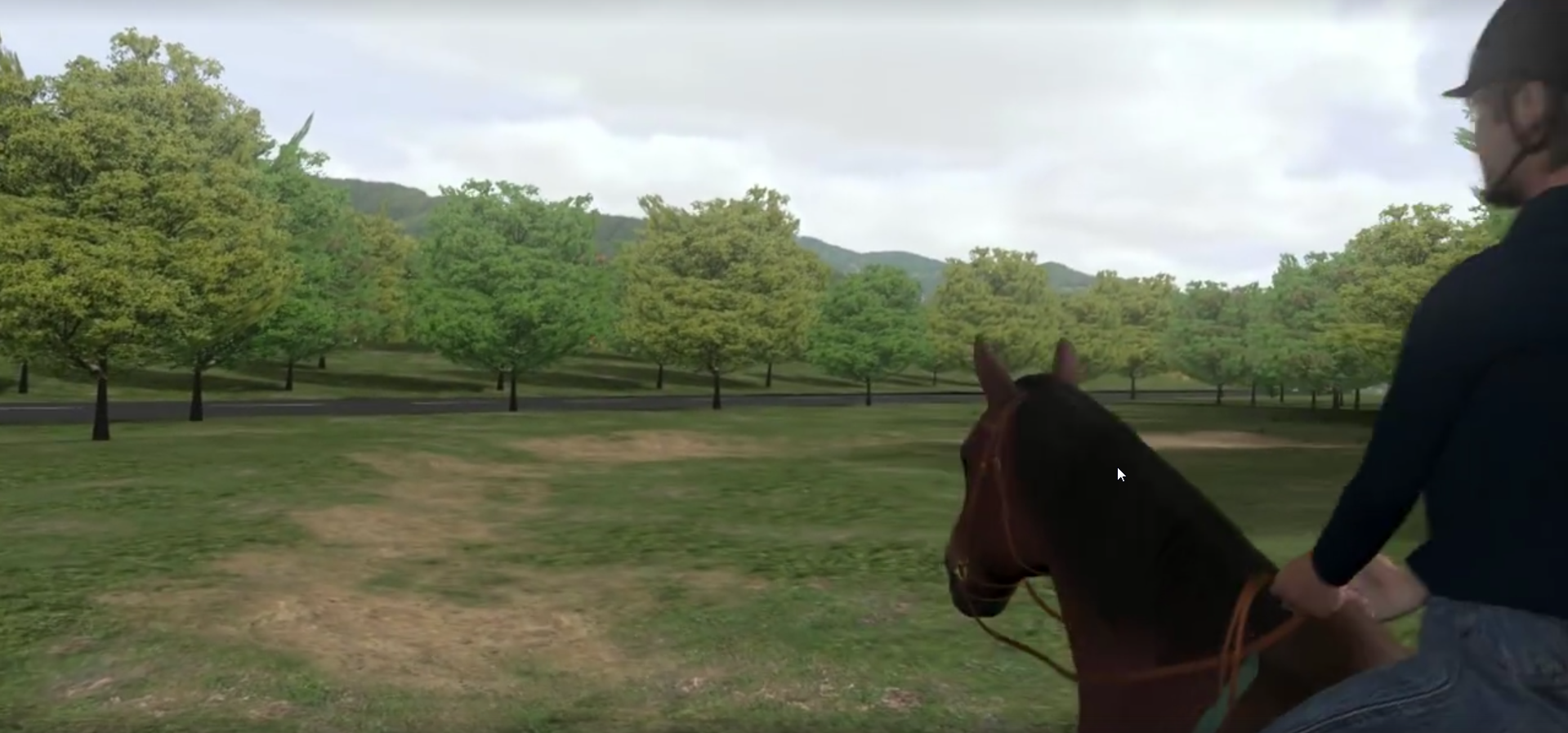 Horse Vision: Simulation shows a horse-eye view | AGDAILY