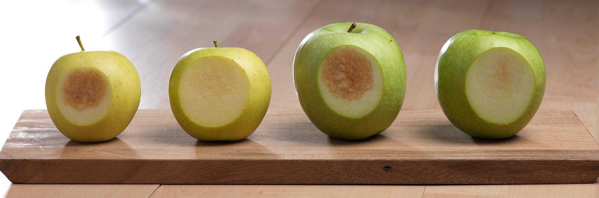 Farm Babe: Arctic Apple may help change perception of GMOs