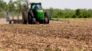 Focus on nitrogen this growing season | AGDAILY
