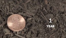 It's time for topsoil — Monsanto video digs into the issue