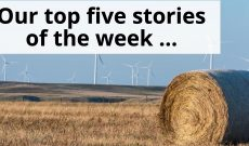 Friday Favorites: Top five AGDAILY stories Aug. 4- 10