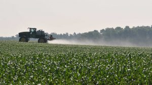 dicamba spraying