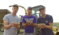 Peterson Farm Bros. release 12th parody video: 'Forage Harvester'