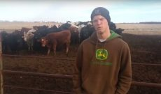 Peterson Farm Brothers teach us 'How to Moo'