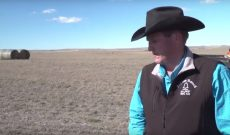South Dakota rancher: Only way to fix drought is moisture