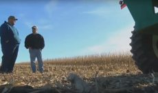 Red & green combine to help son harvest dad's last crop