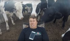Farmer Derek: My cowlick is from my cows