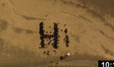 Satellite gets shot of Farmer Derek's cow art
