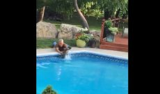 Kansas farmer rescues baby deer from pool