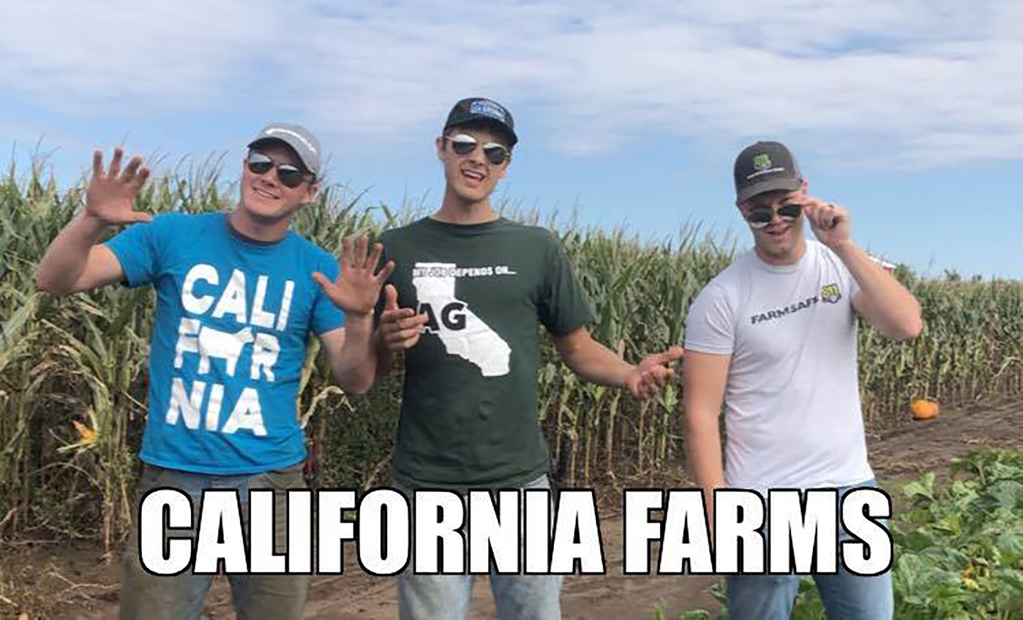petersons california farm