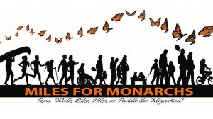 Miles for Monarchs