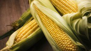 consider corn