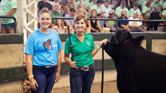 charity steer auction