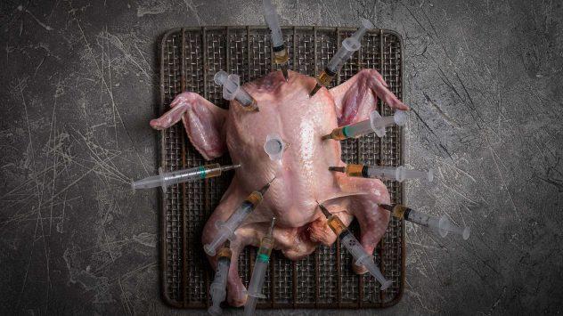 gmo chicken