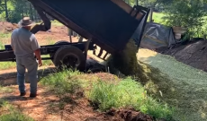 Silage Shuffle: This Farm Wife shows us the ins and outs of making corn silage