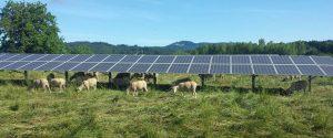 oregon solar farm