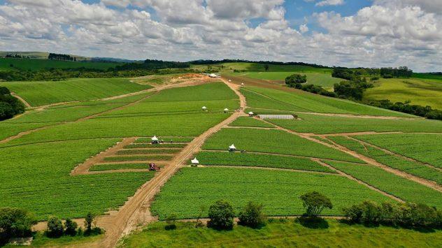 pepsi demonstration farm