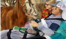 Cowboy battling cancer gets one last visit with his beloved horse