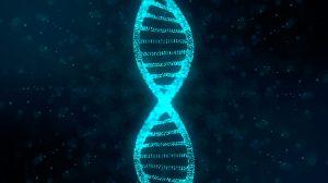 gene-edited